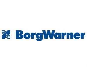 borgwarner-4wheeler