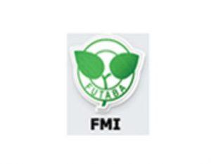 fmi-4-wheeler